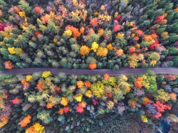 IDEE PER I TUOI viaggi autunno inverno